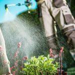 Απολύμανση σπιτιού - Απεντόμωση σπιτιού - Φθηνή απολύμανση σπιτιού - Φθηνή απεντόμωση σπιτιού - Απολυμάνσεις σπιτιών - απεντομώσεις σπιτιών - Συνεργείο απολύμανσης σπιτιών - συνεργείο απεντόμωσεις σπιτιών - Απολύμανση σπιτιών για κατσαρίδες, κοριούς, ψύλλους, τσιμπούρια, μύγες