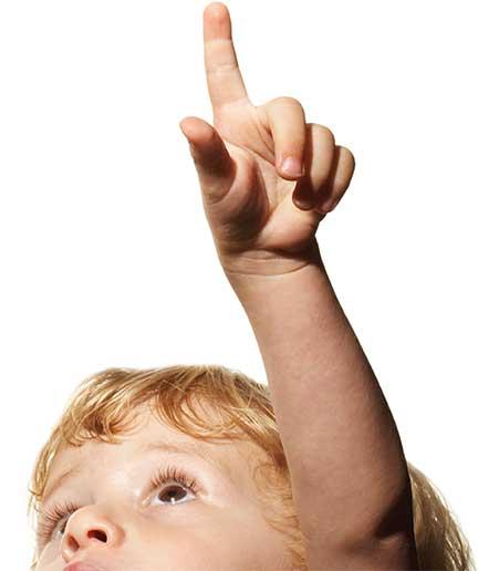 Απεντόμωση-Ελευσίνα-Απολύμανση-Ελευσίνα-απολυμάνσεις-Ελευσίνα-Απεντομώσεις-Ελευσίνα-Κοριοί-ψύλλοι-τσιμπούρια-σφήκες