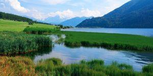 Απεντόμωση κουνουπιών σε λίμνες με φθηνές τιμές